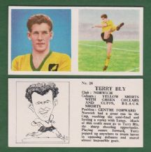 Norwich City Terry Bly 26